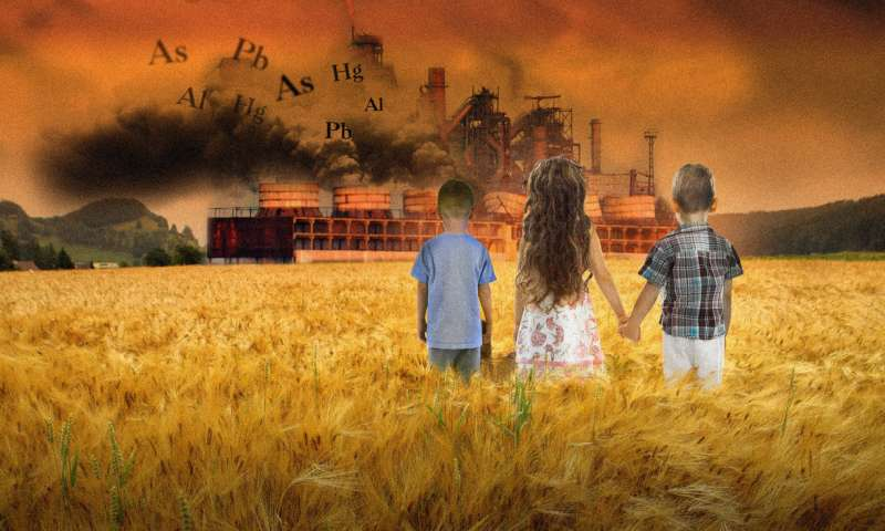 Toxic metal pollution linked with the development of autism spectrum disorder